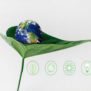 A leaf embraces the globe, Sustainability Concept, go green, save the globe